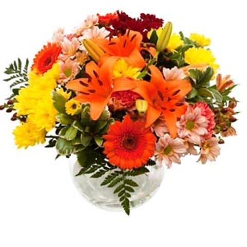 blaze flowers